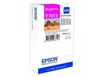 Cartridge Epson C13T70134010  - purpurová